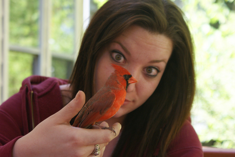 Christine and the Cardinal